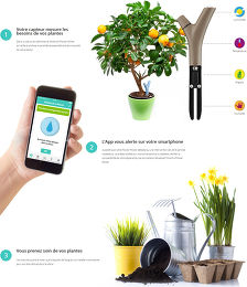 Parrot Flower Power Vue technologie 1