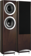 Tannoy Definition DC10T Noyer