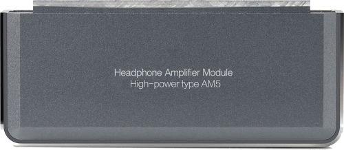 Carte d'amplification FiiO AM5
