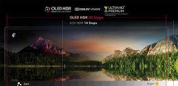 LG OLED65E6V Vue technologie 3
