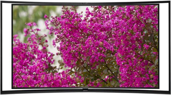 Samsung KE55S9C Vue principale
