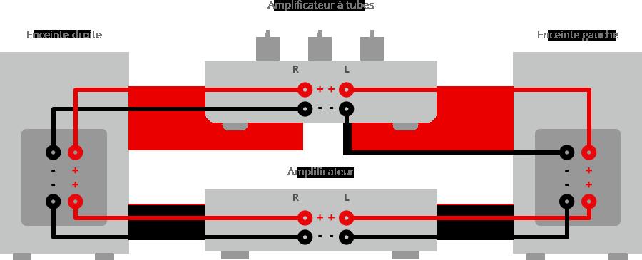 Câblage bi-amplification.