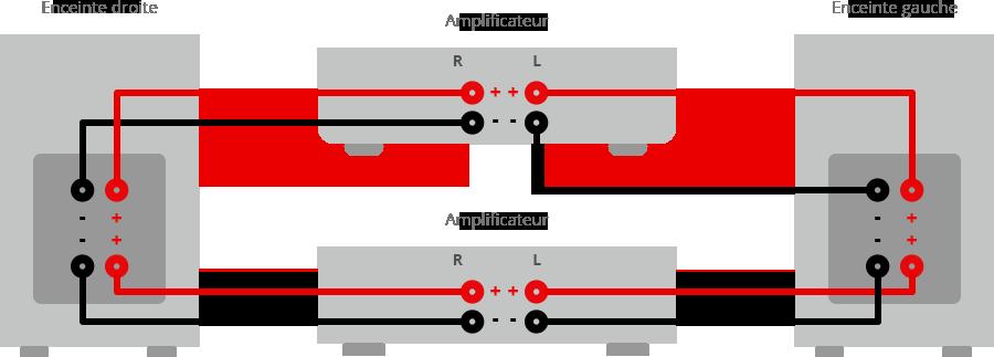 Câblage pour la bi-amplification.