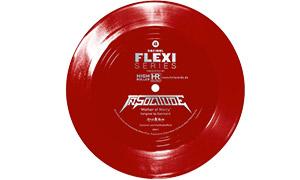 le Flexi disque