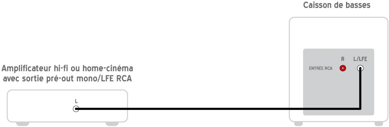 Connexion ampli caisson LFE
