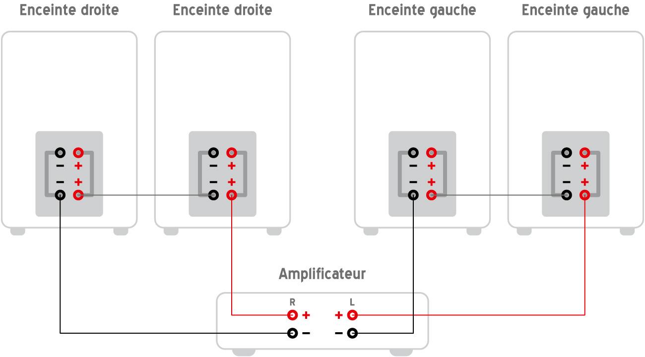 Branchement en série avec borniers de bi-amplification