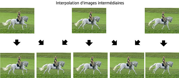Interpolation d'images